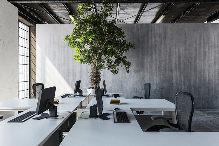 interior of a concrete office with interior design elements